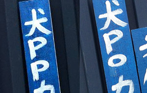 「犬POカレー」と「犬PPカレー」の看板