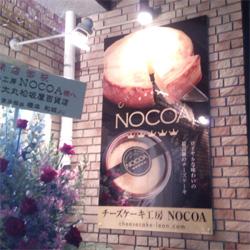 nocoa