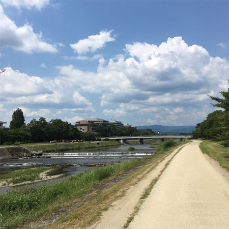 鴨川の自転車道