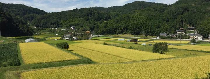 茨木市見山地区